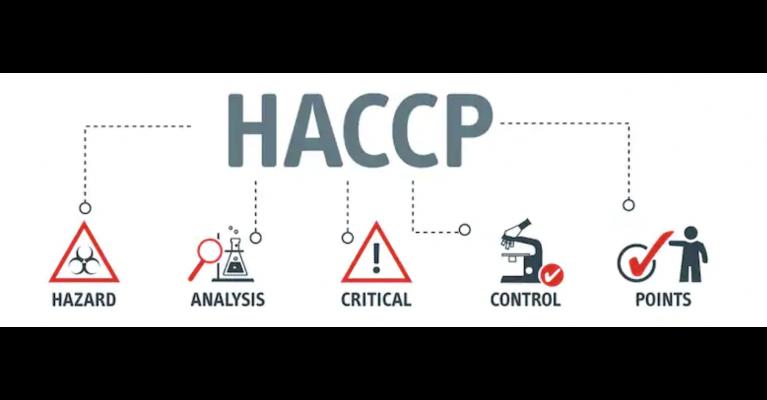 haccp1 767x400 1