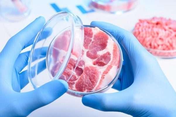 geleceğin alternatif protein kaynaği yapay et00001 601x400 1