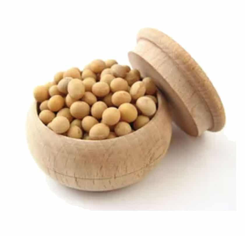 allergen strip test agrastrip® soya – 1 kutu 10 test