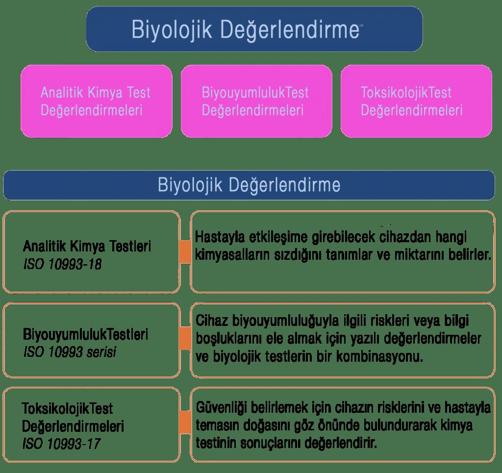 biyolojik değerlendirme r